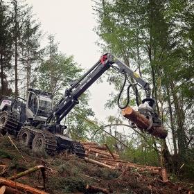 Logset-Harvester-mit-Mesera-280V-1